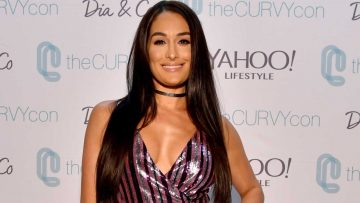 Nikki Bella Reveals She Has No Help While Artem Chigvintsev Prepares For Dancing With The Stars