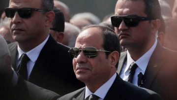 Egypt's el-Sisi warns of instability after protest calls