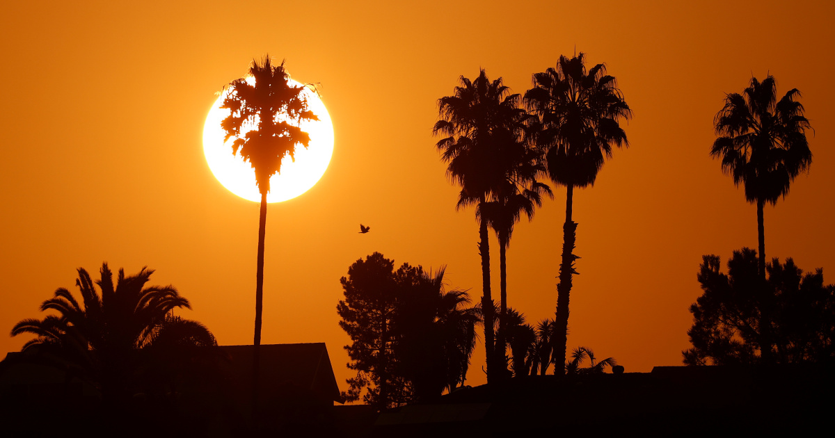 Could heatwave insurance be a new weapon in climate fight?