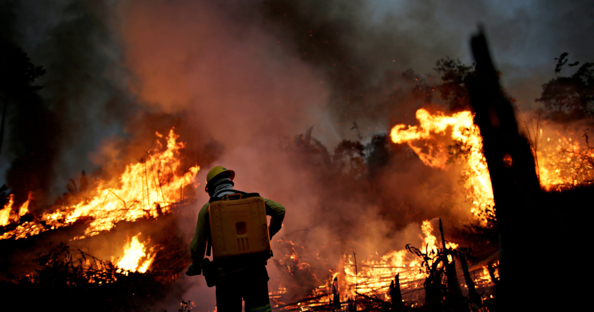 Fires in Brazil's Amazon worst in 10 years, data shows