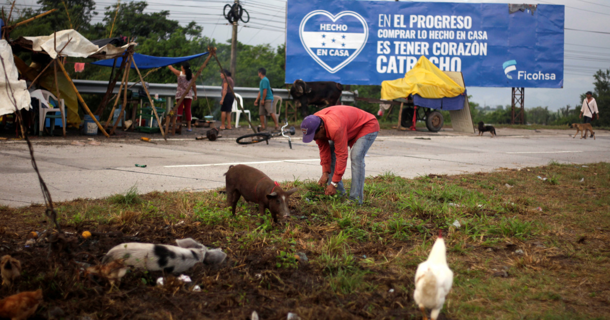 Honduras asks US to extend TPS for citizens after hurricanes